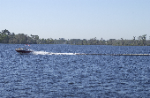 Far away shot of family on a moving motor boat with a shoreline of trees in the background.